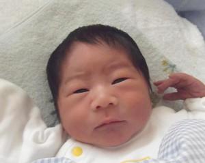2016年12月25日生まれ 桜太くん