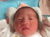 2017年2月26日生まれ 咲羽ちゃん