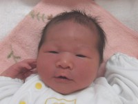 2017年5月13日生まれ 芽咲ちゃん