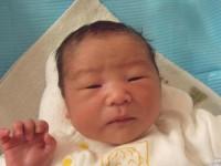2017年9月21日生まれ 蒼羽くん